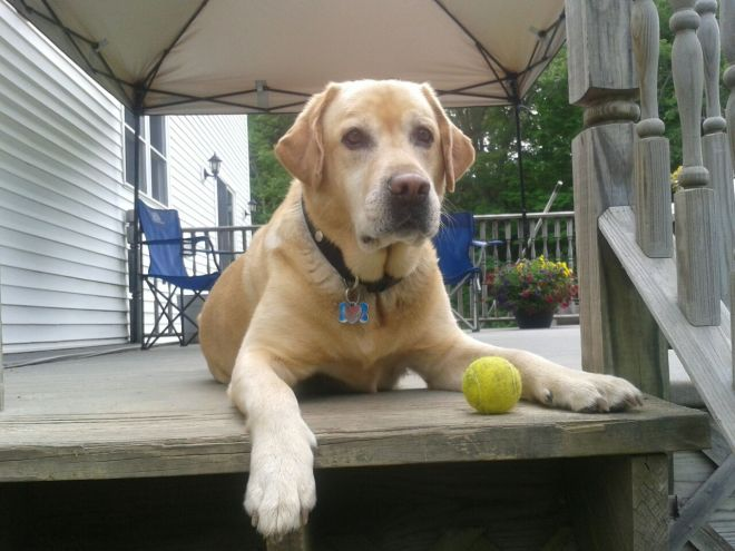 Jackson ready and waiting for John to play ball!