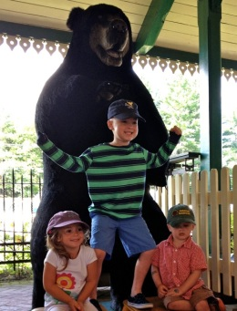 cousins with the bears