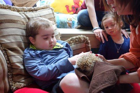 The hedgehog is prickely